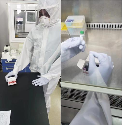 华大基因向安哥拉赠送新冠病毒突变株检测试剂
